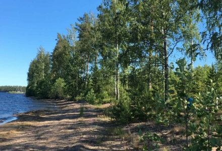 finland activities