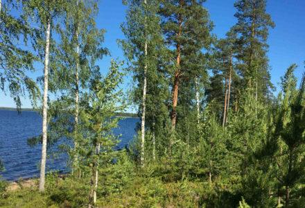 финляндия отдых